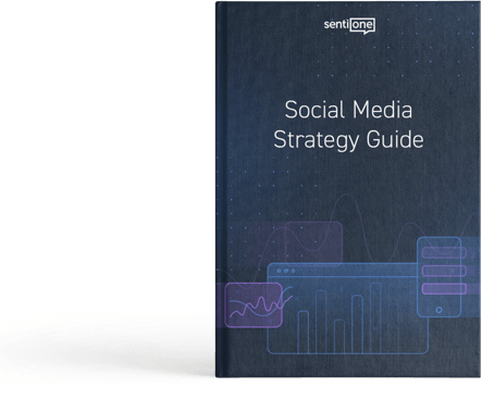 Social Media Strategy guide ebook cover
